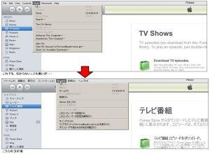 iTunes 10.2.1.1